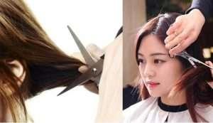 Cắt tỉa phần tóc hư tổn