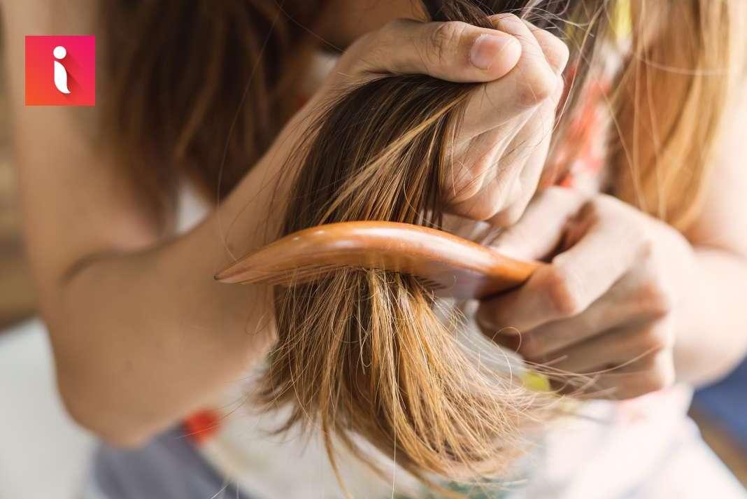 Sử dụng dầu gội chăm sóc tóc hư tổn là giải pháp nhanh nhất