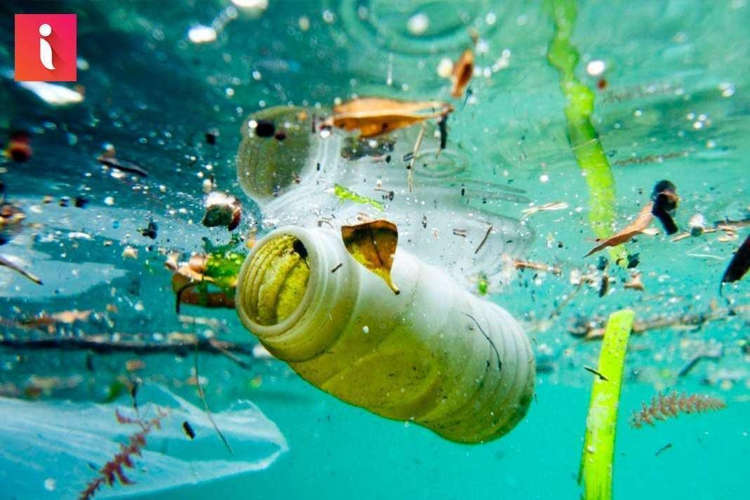 Nhiều ưu điiểm là thế nhưng tác hại của nhựa PET là vô cùng lớn !