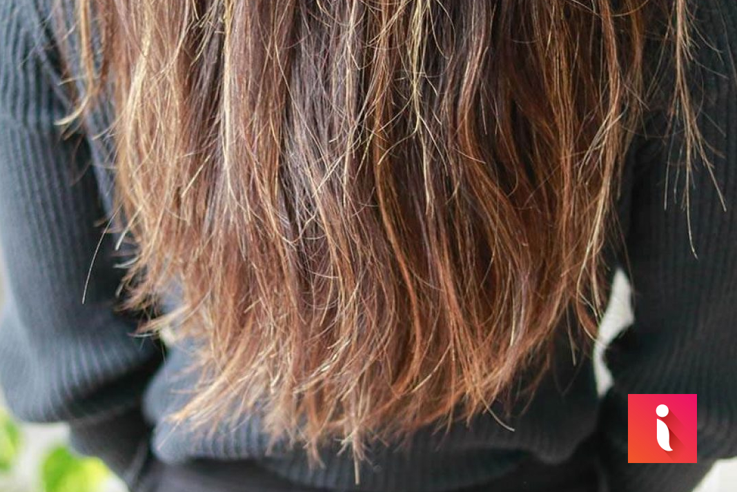 Bạn sẽ làm gì để giảm thiểu tình trạng chẻ ngọn ở tóc