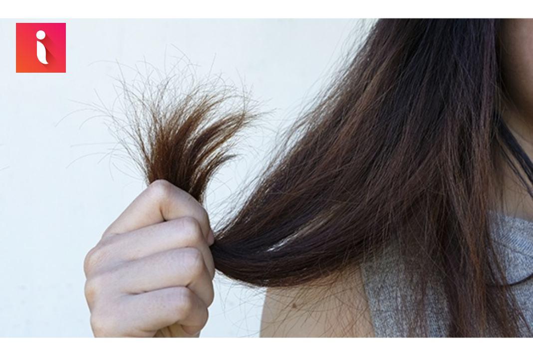 Vấn đề về tóc tiết lộ sức khỏe phổ biến nhất - tóc gãy rụng